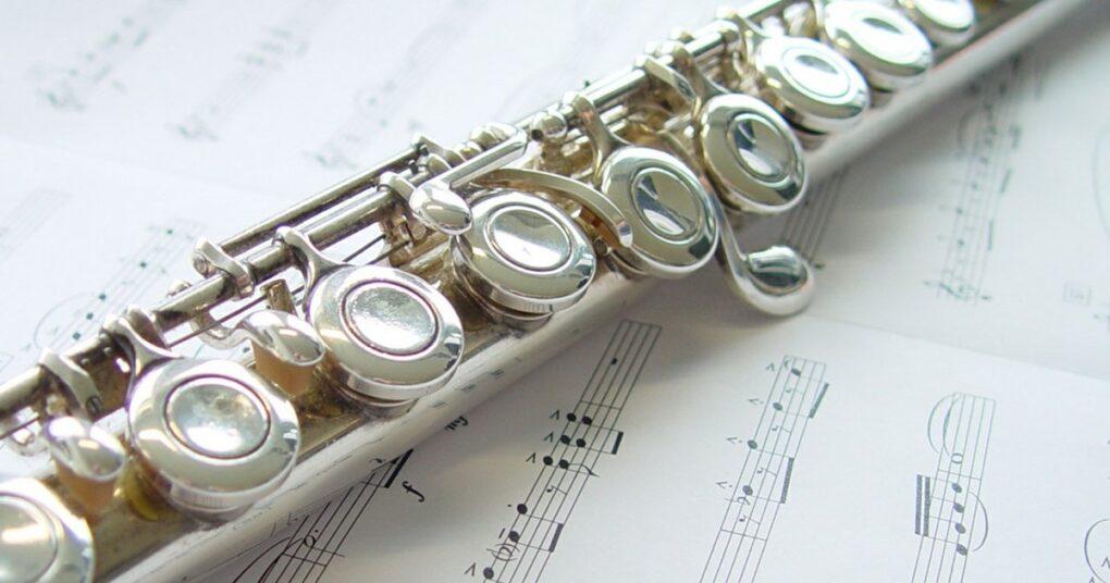 moderna-flauta-prva-medjunarodna-privatna-muzicka-skola-eva-music
