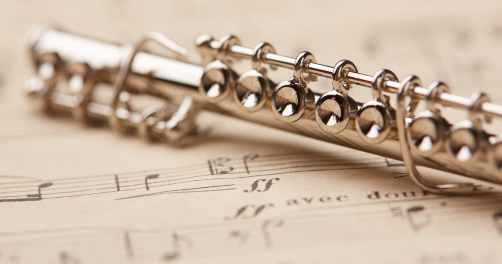 flauta-privatna-muzicka-skola-eva-music